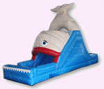 NO.GWS-46 Whale water slide